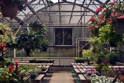 3804985067_d17aa9f08b_b_greenhouse
